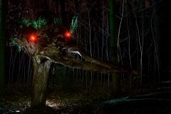 Sid im Wald